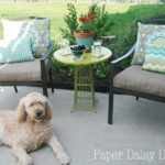 Patio Makeover Reveal