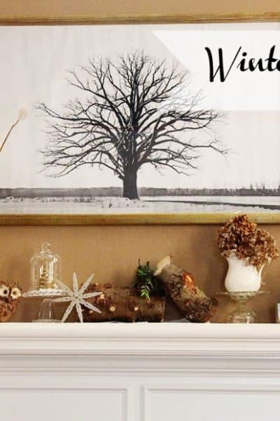 Winter Mantle 2014