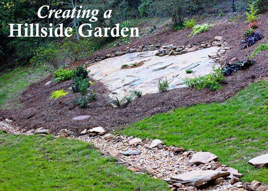 Hillside Landscape Makeover with Southern Living Plant ...