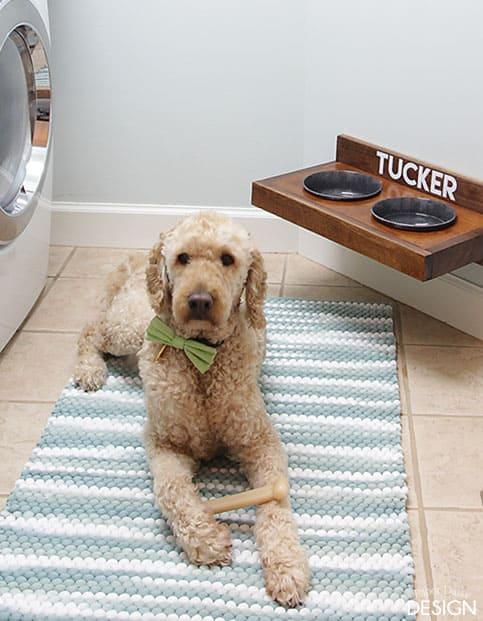 Build a wall mounted dog feeding station