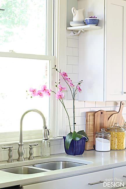 bluekitchenorchid