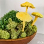 Moss Garden & Mushroom Centerpiece