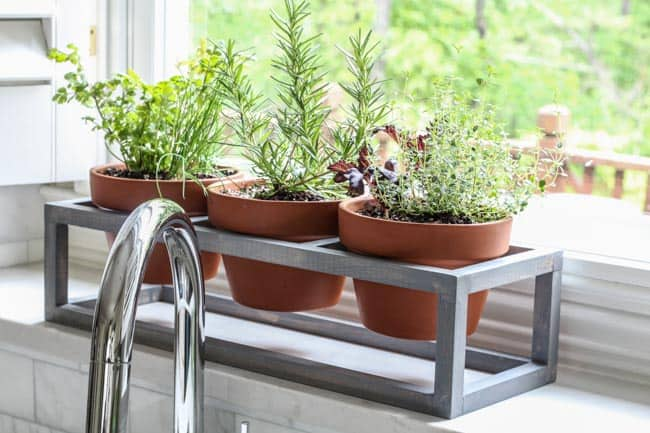 windowsill planter-0760