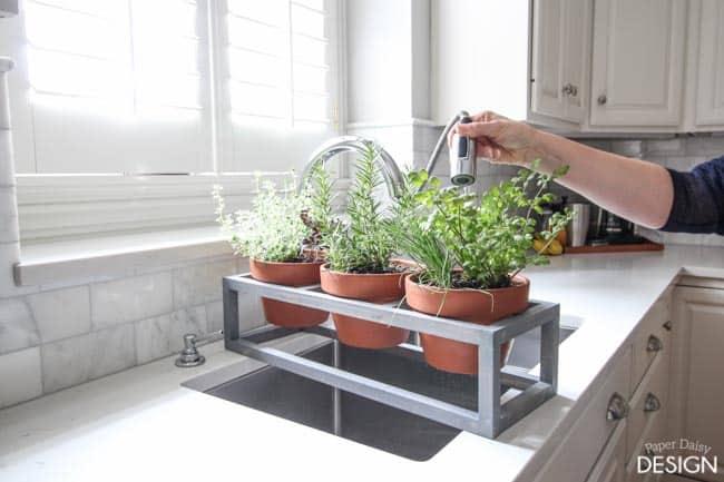windowsill planter-0981
