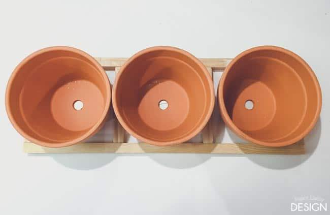 windowsill planter-6689