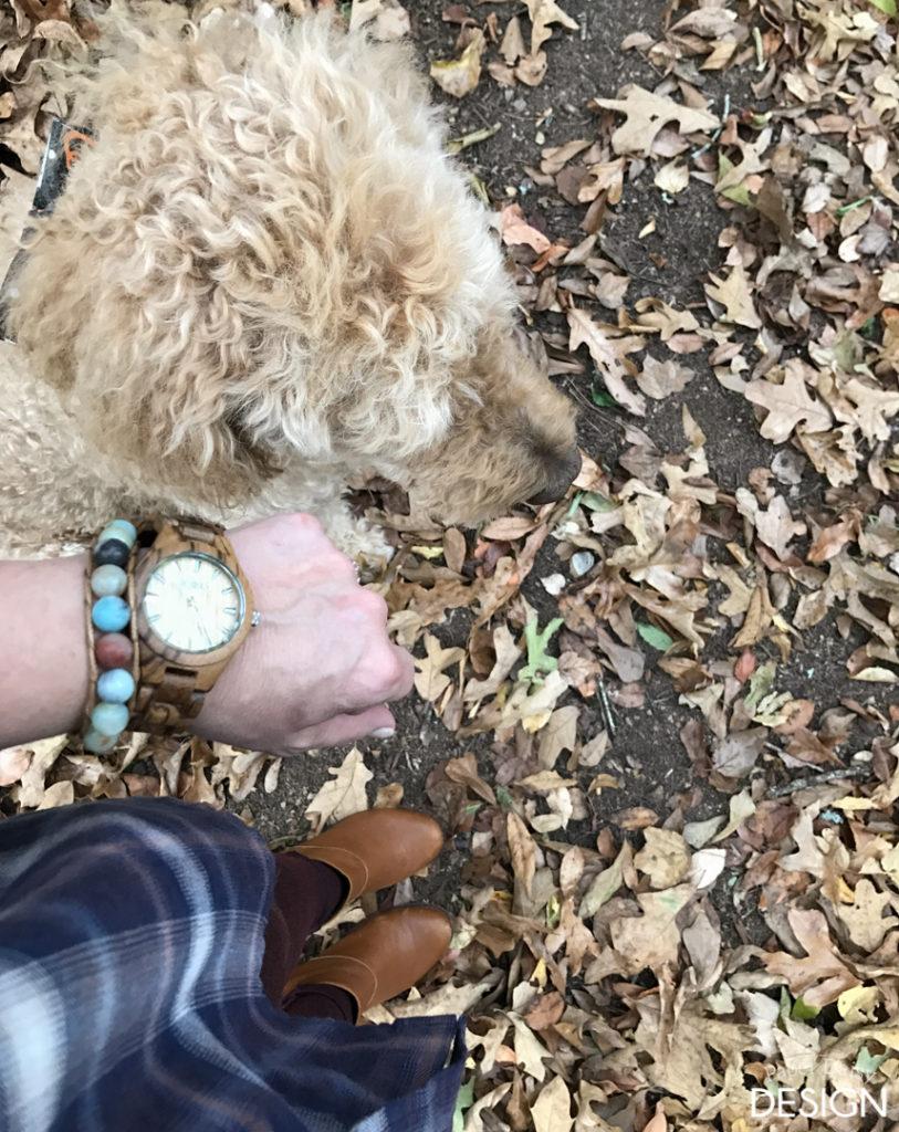wood-watch-8894