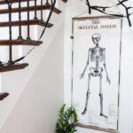 Halloween Poster: Vintage Skeleton Chart