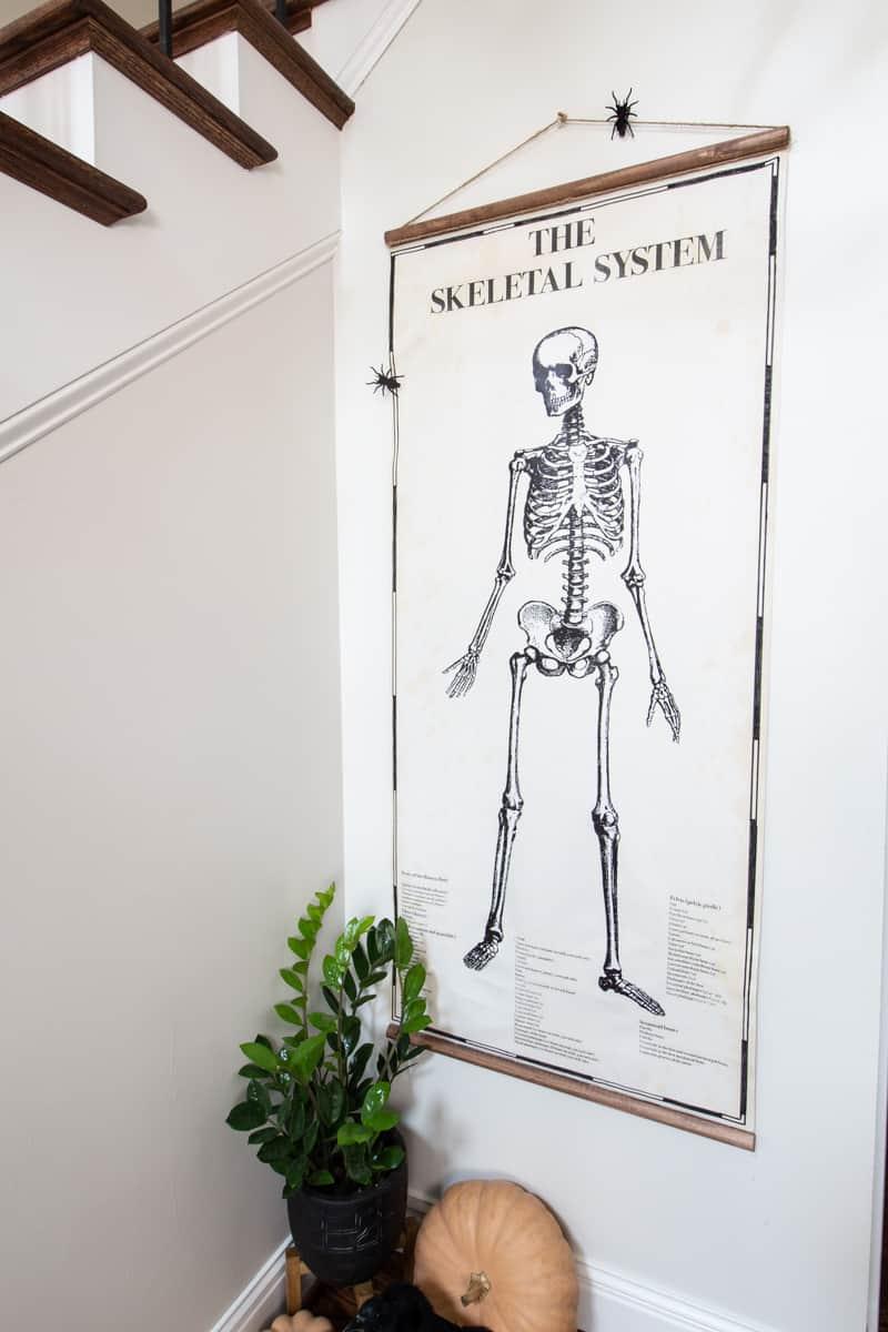 Halloween Poster Vintage Skeleton Chart Deeplysouthernhome